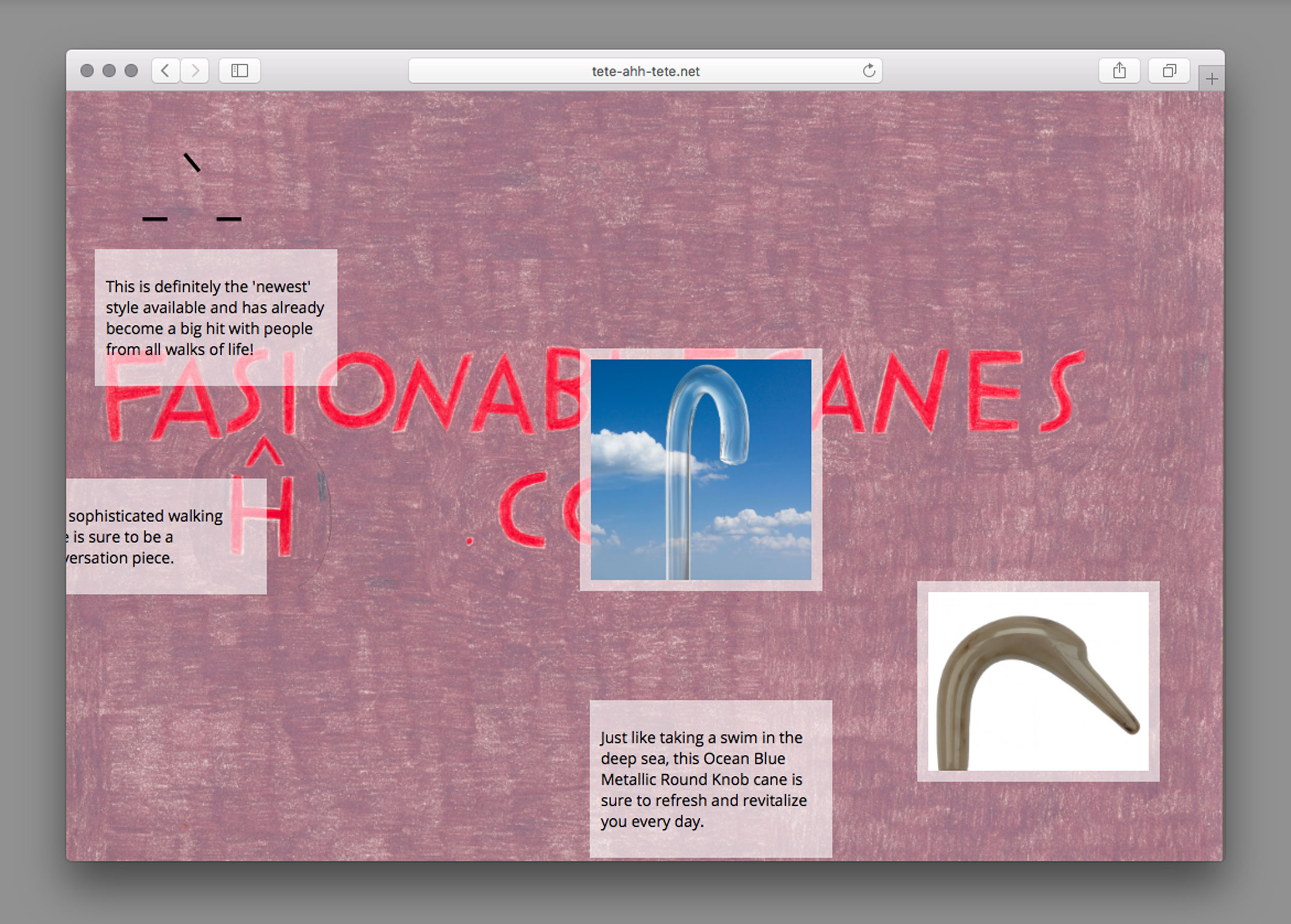 A screenshot of my project on tete-ahh-tete.net about the website fashionablecanes.com.