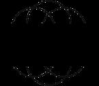 NSF_AllBlack_bitmap_Logo.png