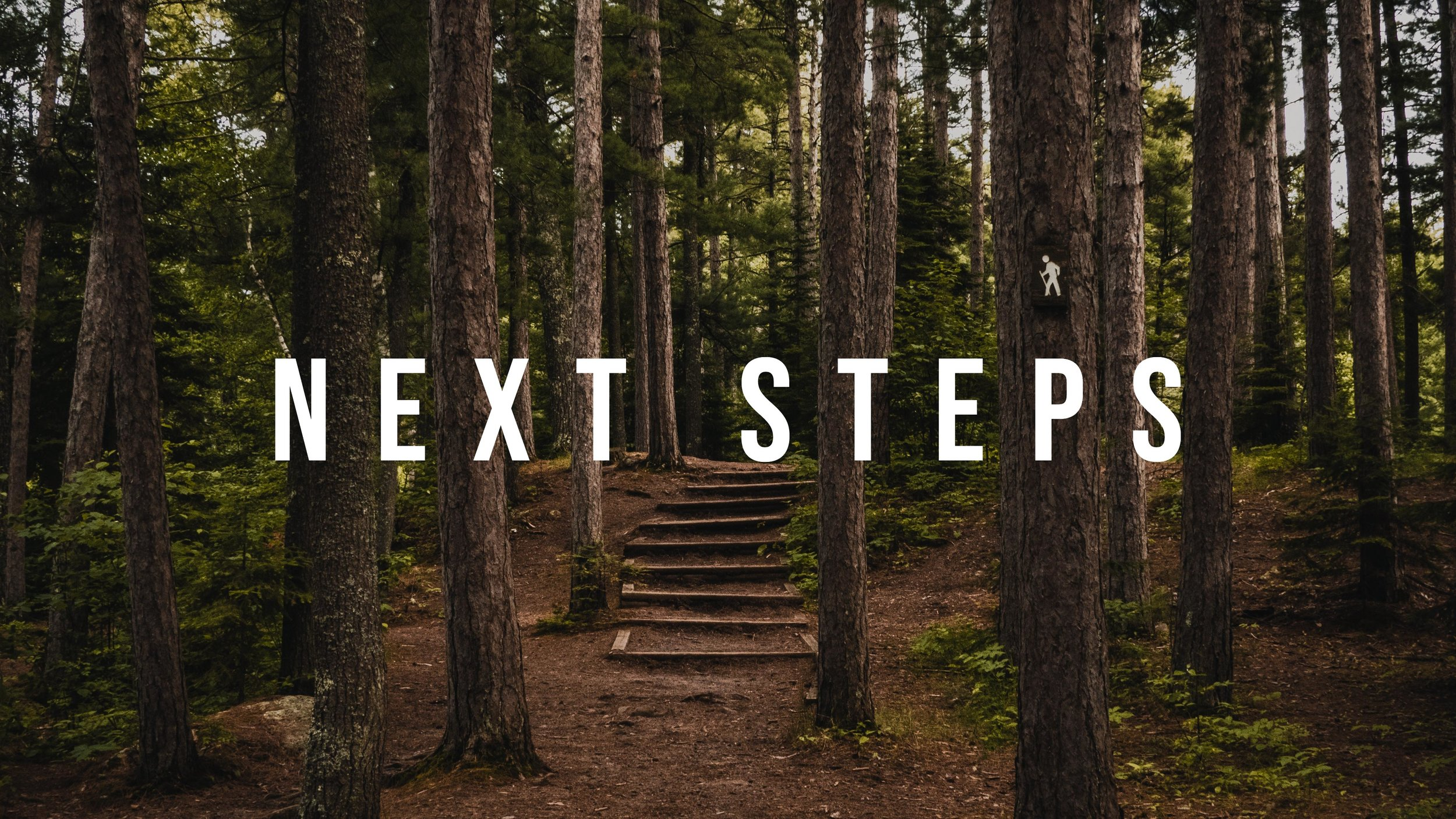 Next-Steps-Graphic.jpg