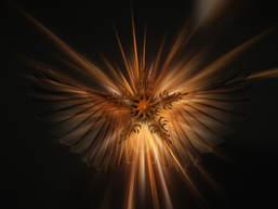 angel-star.jpg