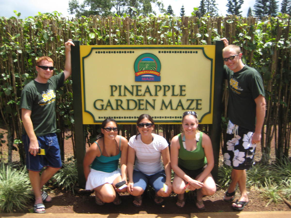 Pinapple Maze