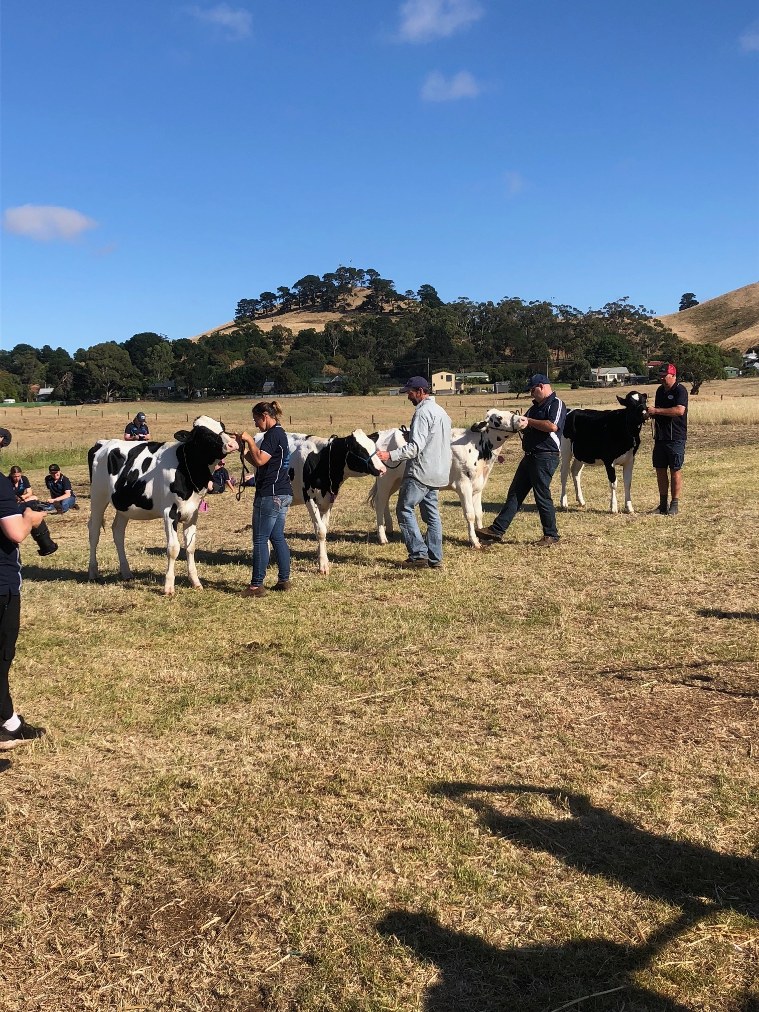 RIST Agricultural College Dairy Industry Australia