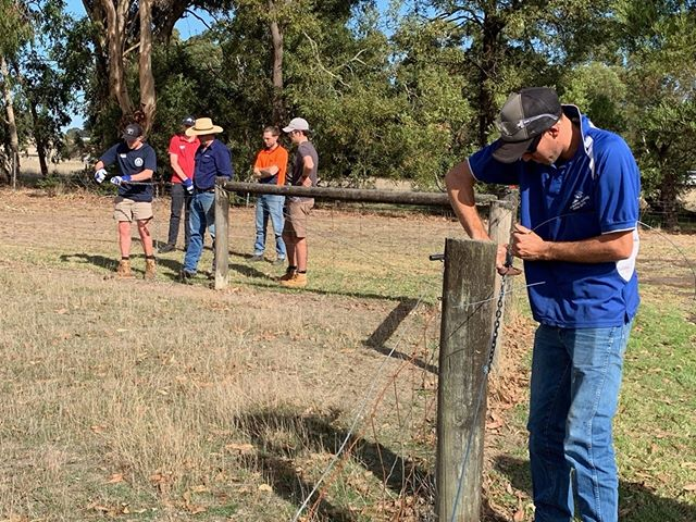 Our Cert III Agriculture students working on fencing skills. Graduates who complete a Certificate III in Agriculture with RIST have gone on to work as stock men and women, farm and station workers and animal attendants in dairy, broad acre cropping, and sheep and beef operations 🐑🐮#ristagcollege