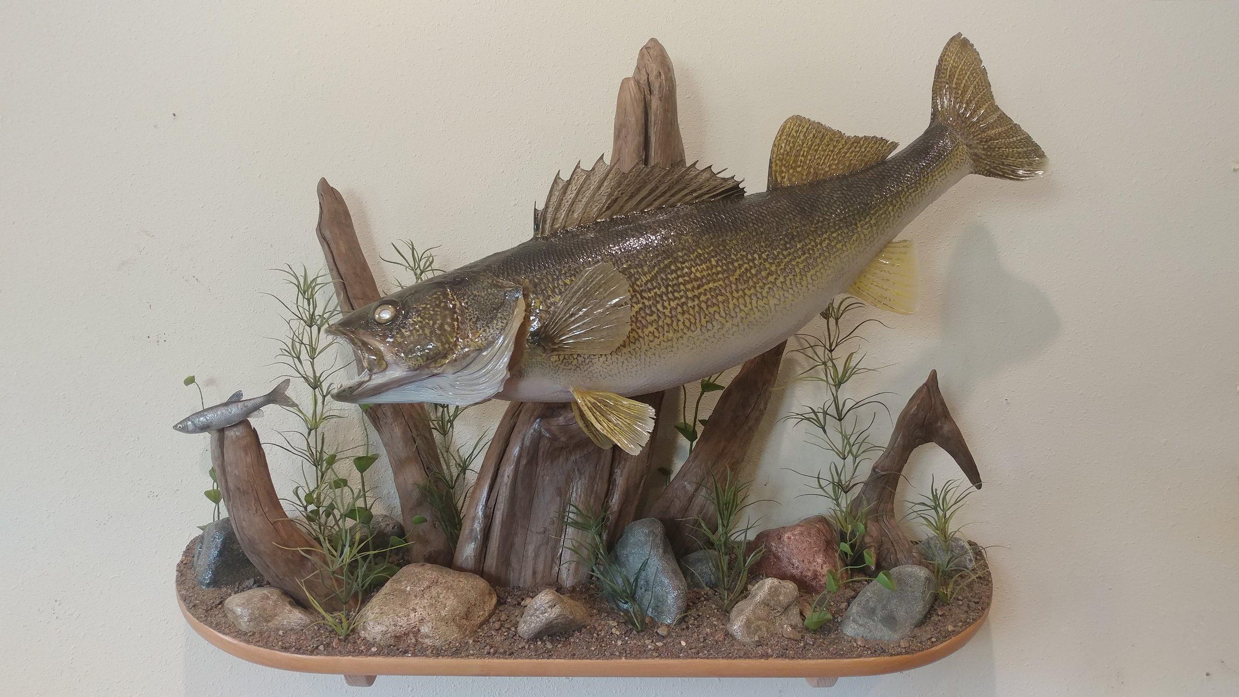fish-1.jpg