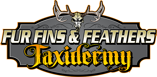 Fur Fins and Feathers Taxidermy Logo