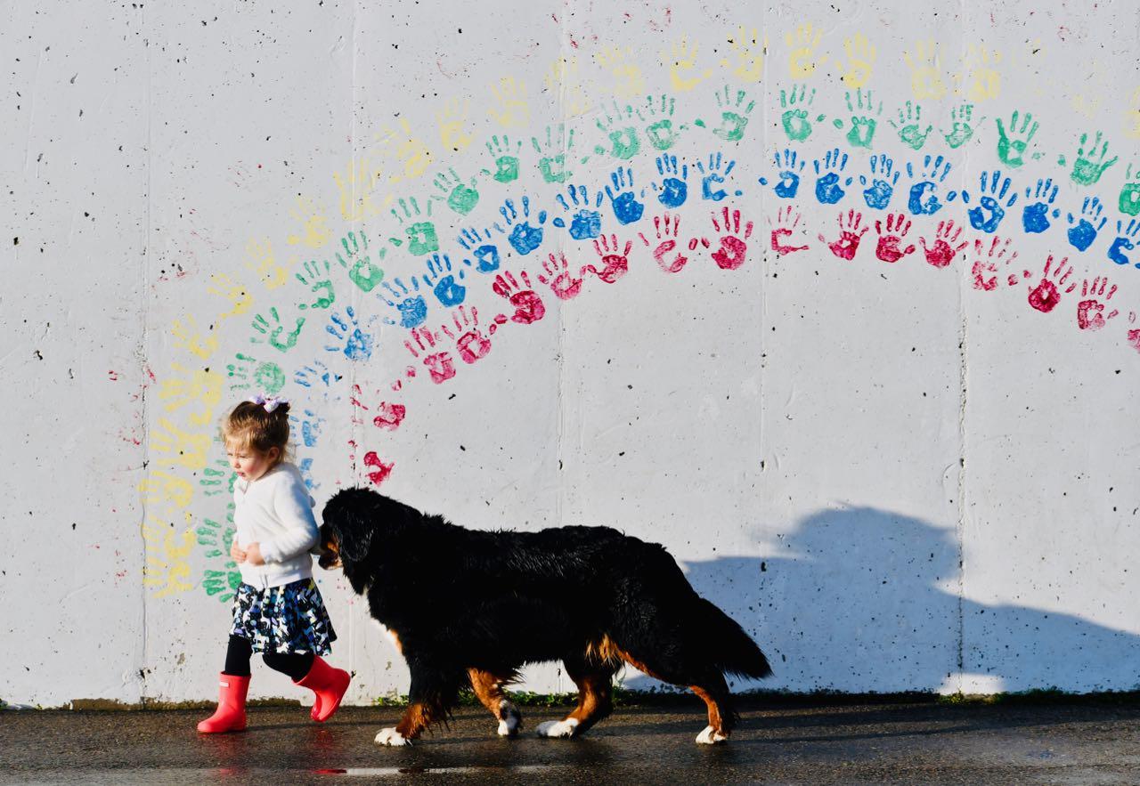 Rainbow (1).jpg