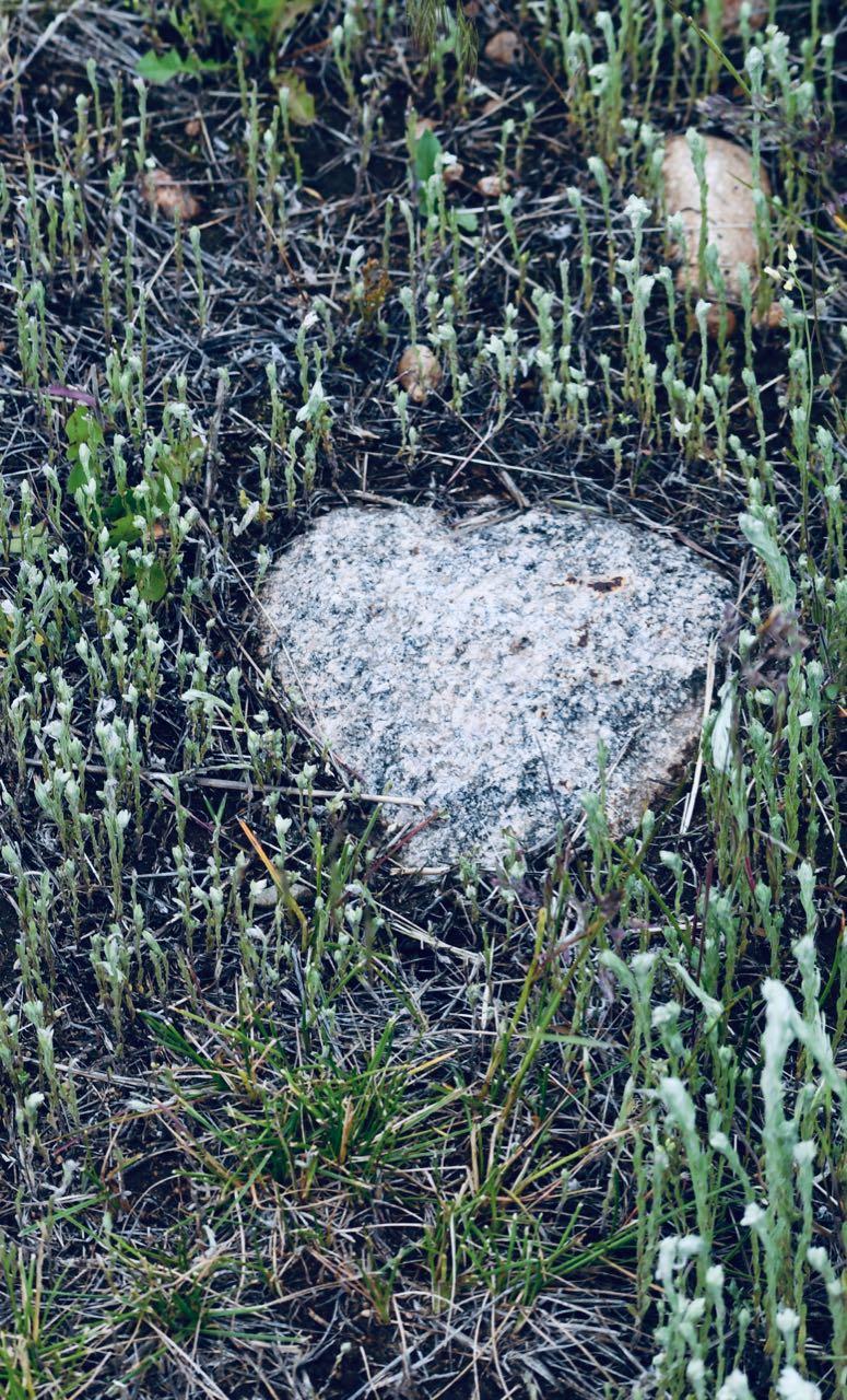 heart rock.jpg
