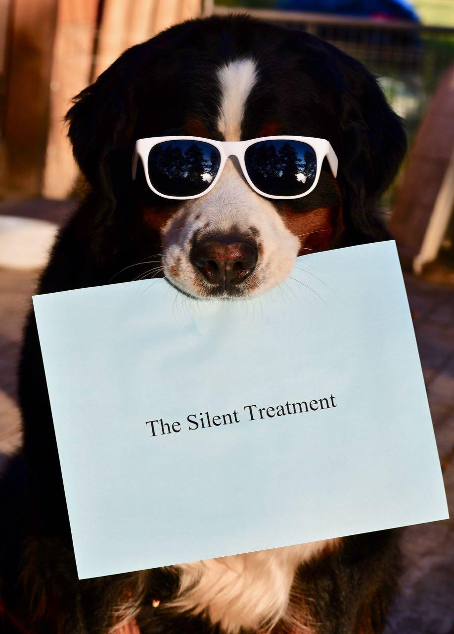 Silent Treatment.jpg