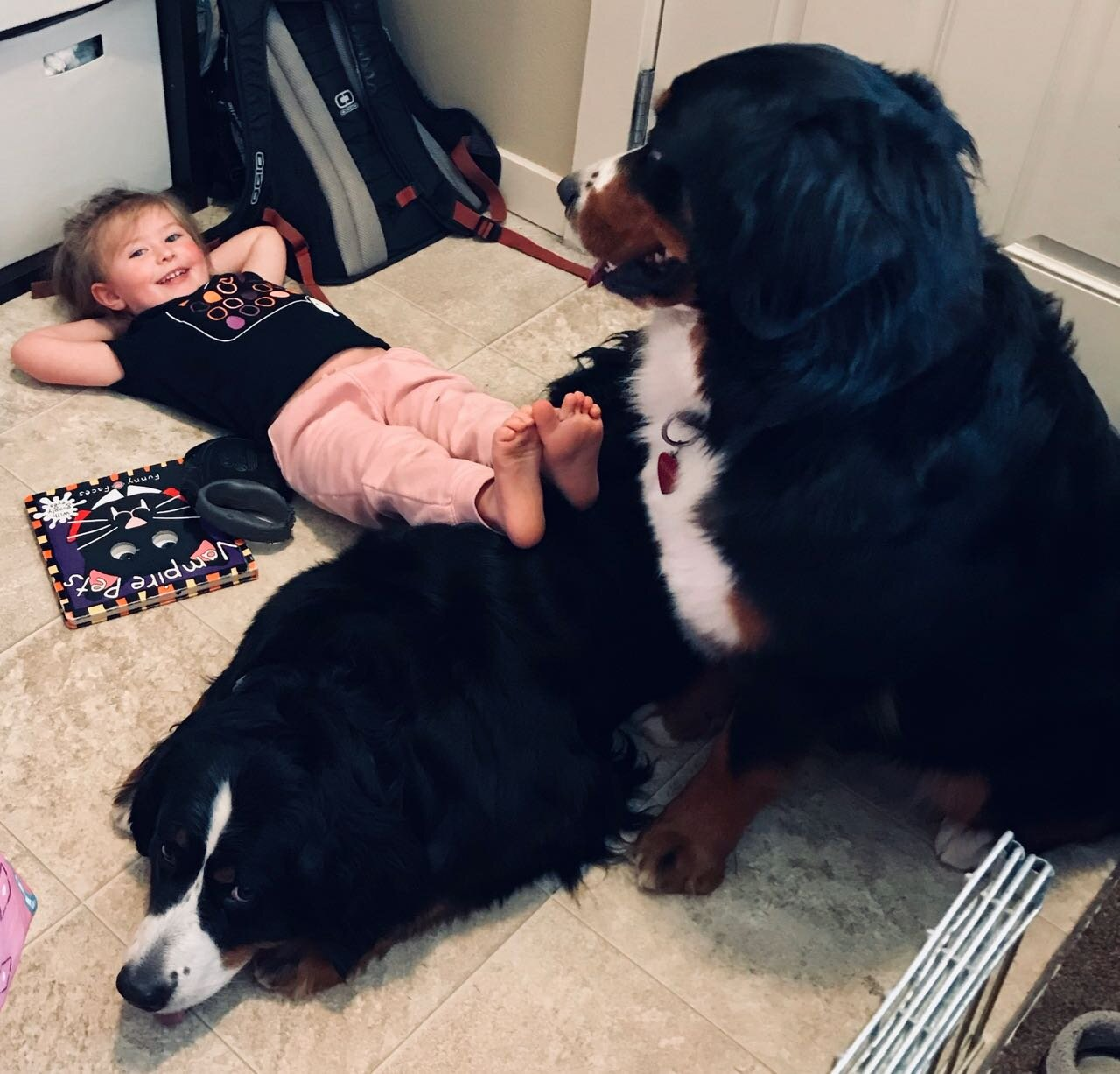 Dogs are free to remove themselves from children's attention at any time. Harper B for Being Patient.