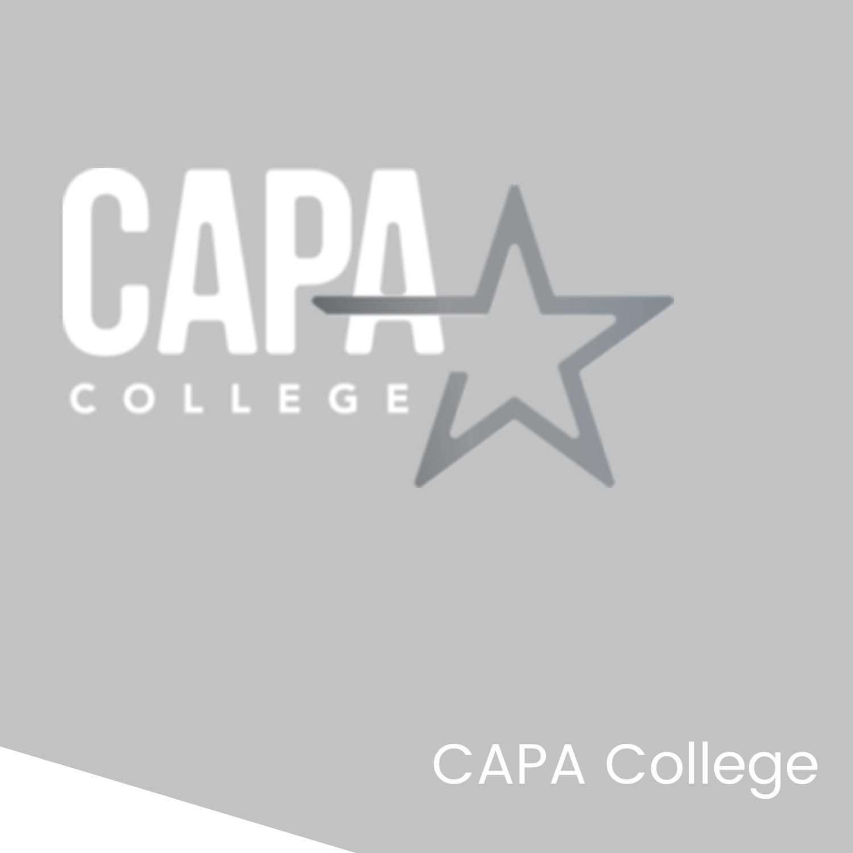 BIM Strategy Project - CAPA College.jpg