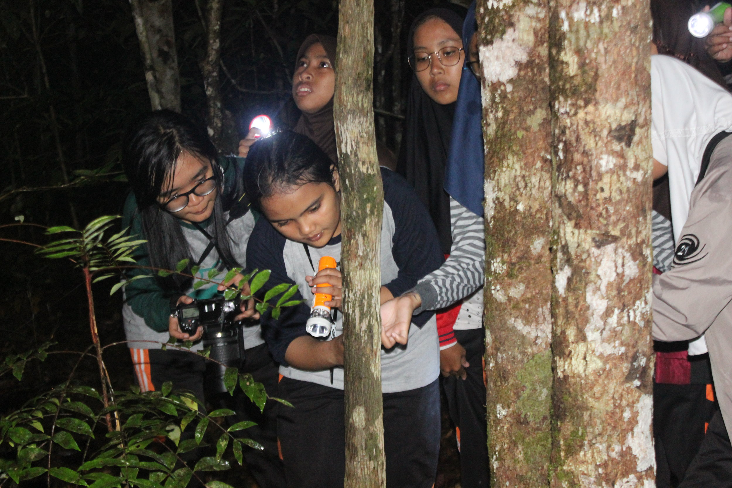 Students from school SMAN 1 Pangkalan Bun on a forest night walk looking for signs of wildlife.