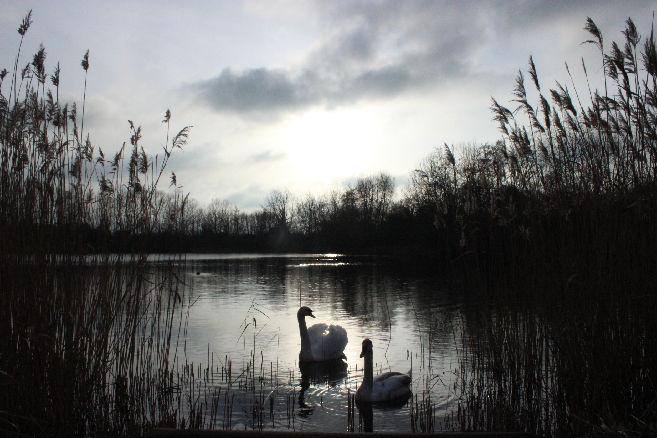Hounslow - Watch the planes take off from Heathrow, explore an expansive country park and visit an ancient church