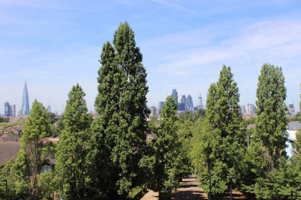 Southwark - Climb a hill, explore docklands, and a quirky nature reserve