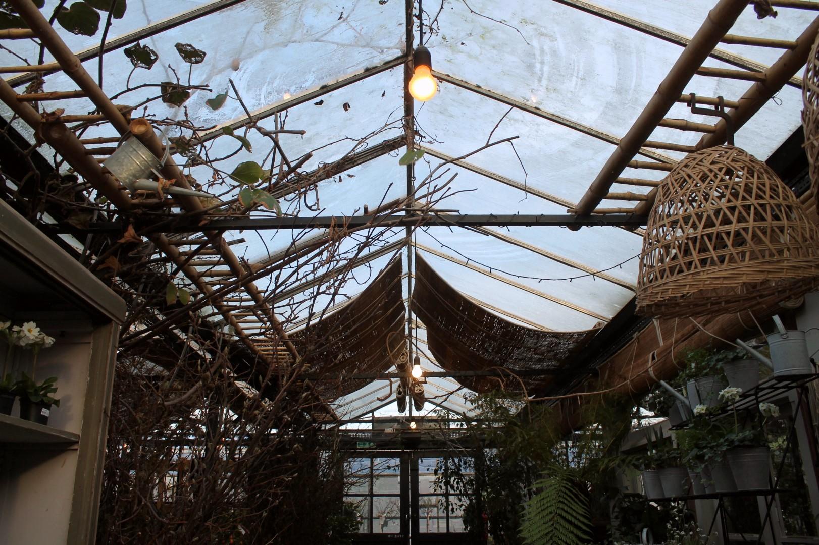 Richmond - Explore a secret garden centre, meadows, and gardens