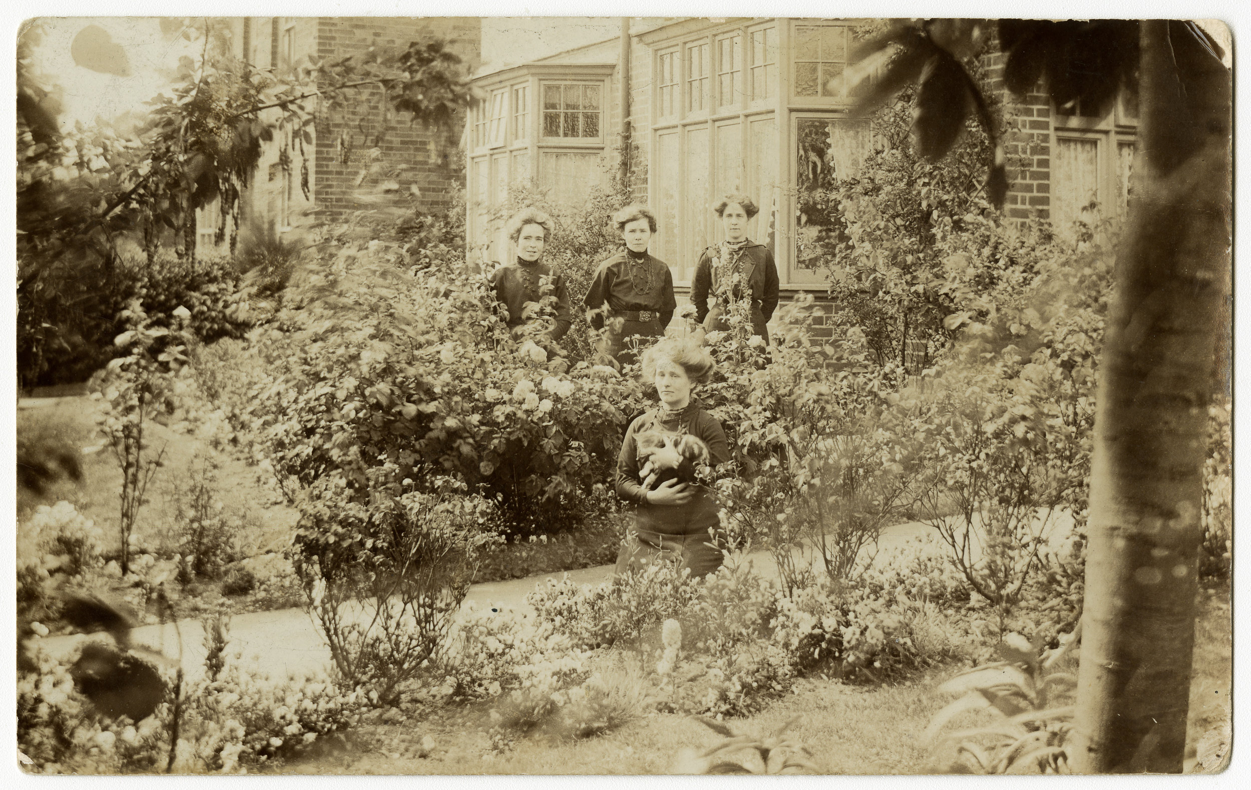 Among the roses of a suburban house , a group on women pose in similar black collared dresses, one woman holding a cat -about 1915