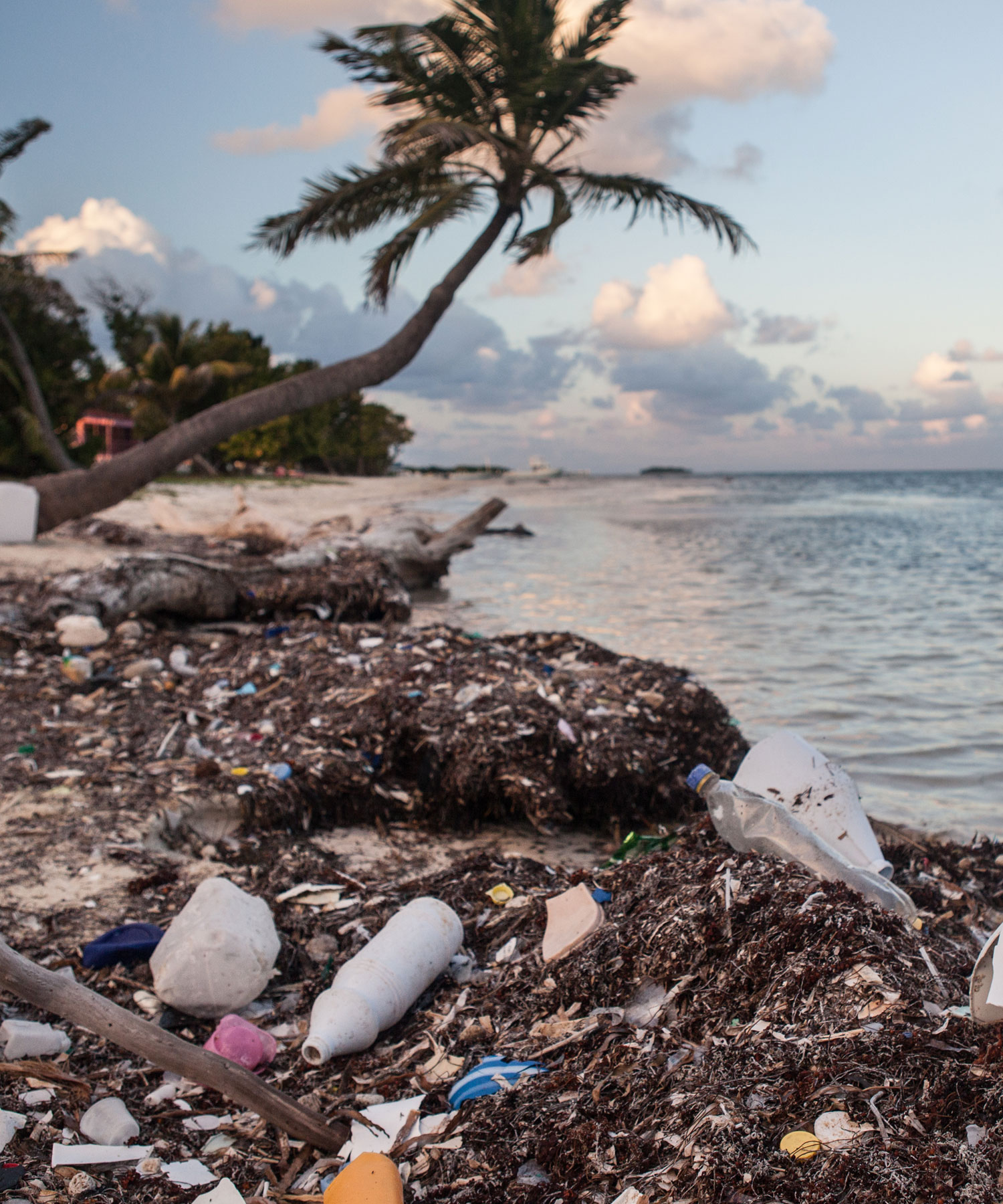 - It's estimated that almost 400 million tonnes of plastic is produced across the globe each year – 8 million tonnes finds its way into our oceans, and only 10% of it is captured and recycled.