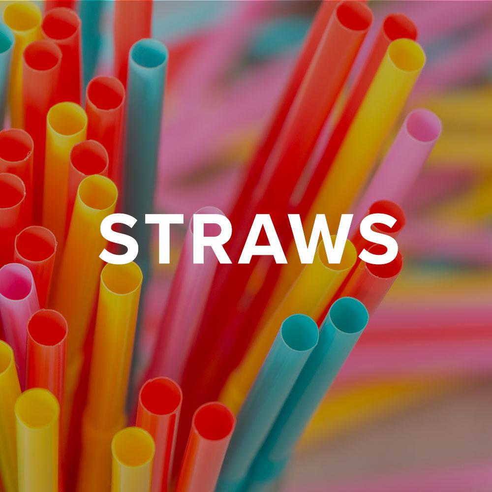 Squ-straws.jpg