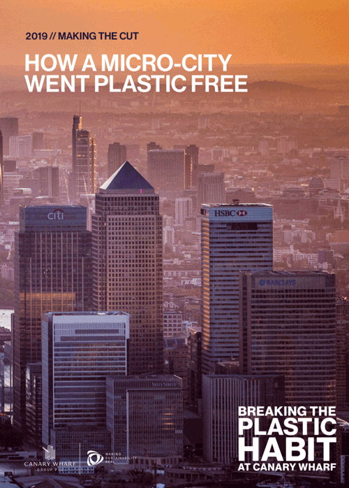 Report-Cover-How-a-Micro-City-Went-Plastic-Free.png