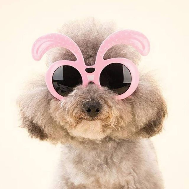 Happy Fabulous Friday!! 💕⠀ ⠀ (source: furabeez)