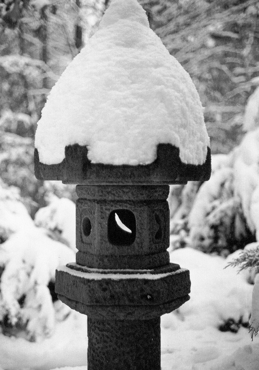 Japanese Lantern, West Townsend, MA