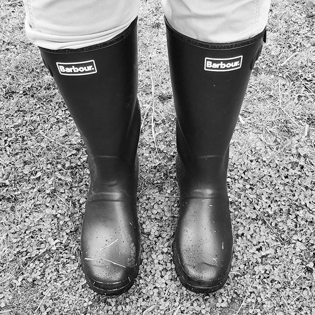 Real boots for real work. Thank you @lauraryhanychcole for the birthday gift! #inclusionstudio #farmlife #horse #barbour