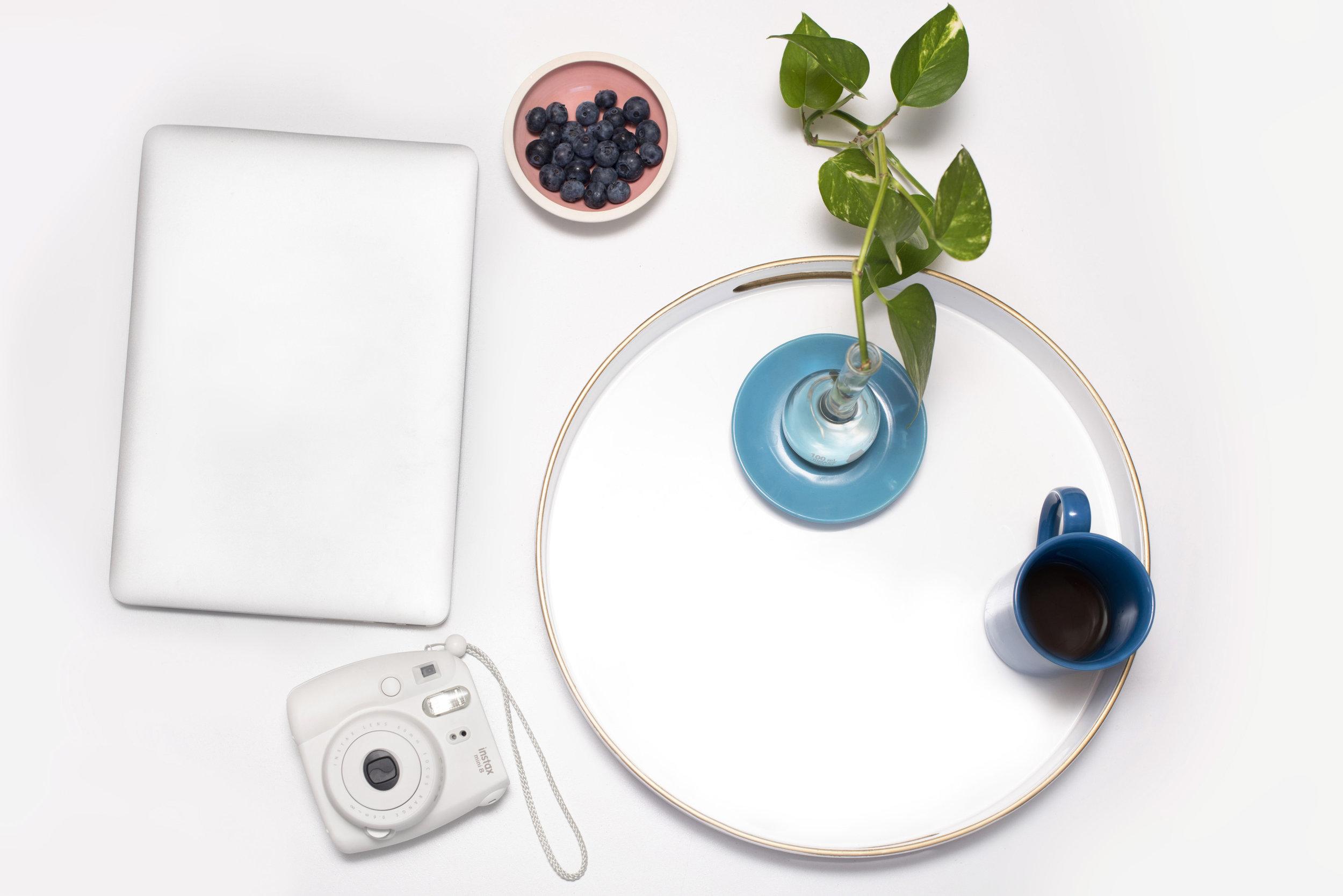 laptop-camera-plant-blueberries.jpg