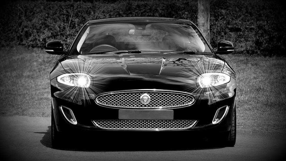 jaguar-1366978_960_720.jpg