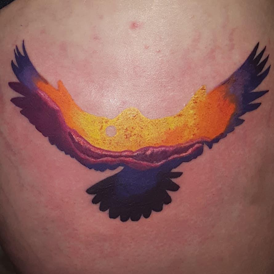 Nick Dorset color bird.jpg