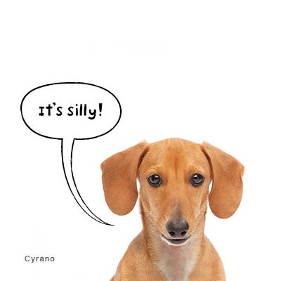 Reviews6_Cyrano.jpg