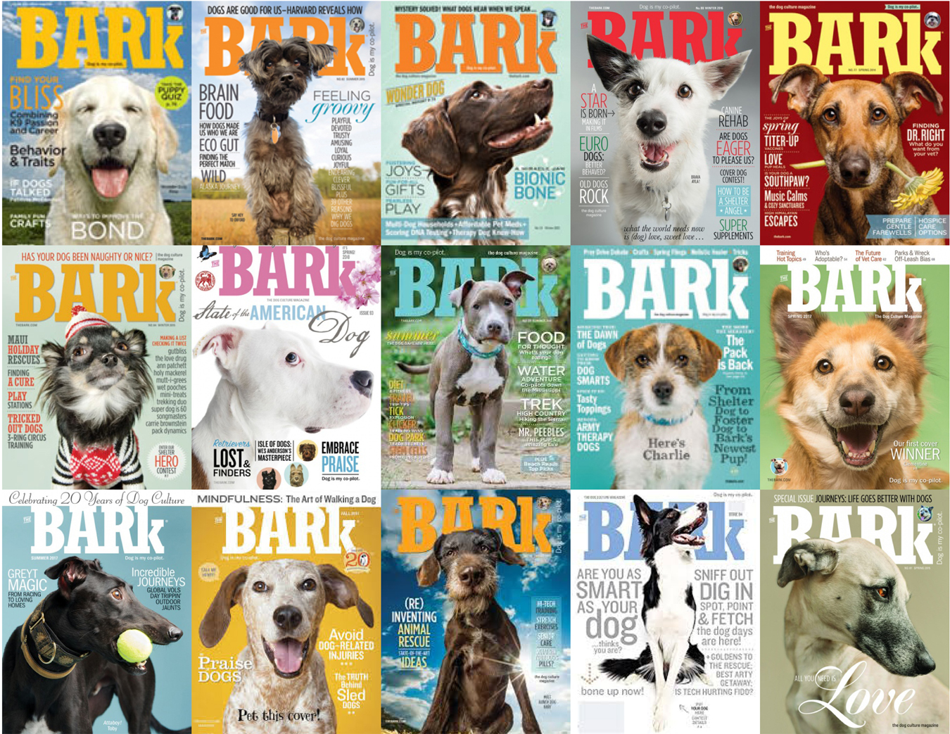 Go to TheBark.com to see what's happening.