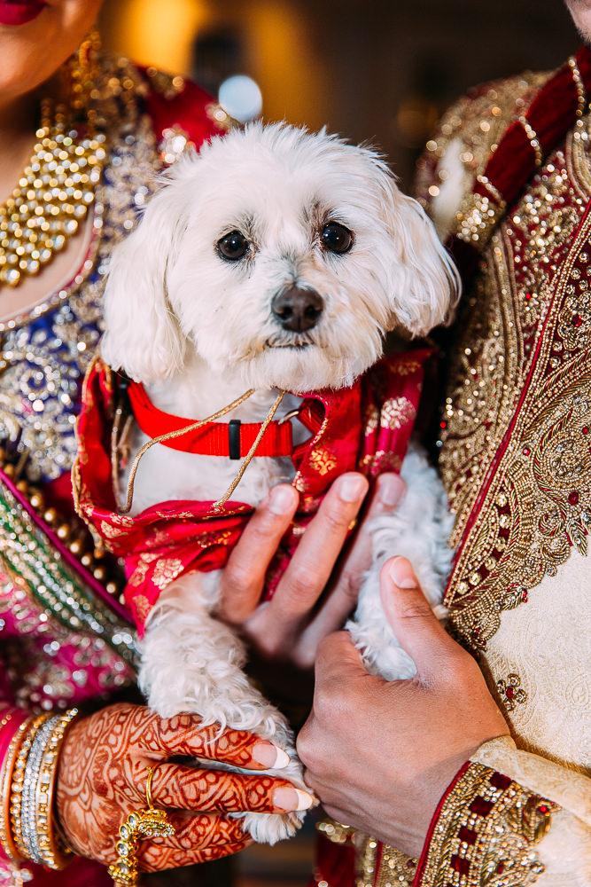 NatashaDavid_Wedding_Preview-30.jpg