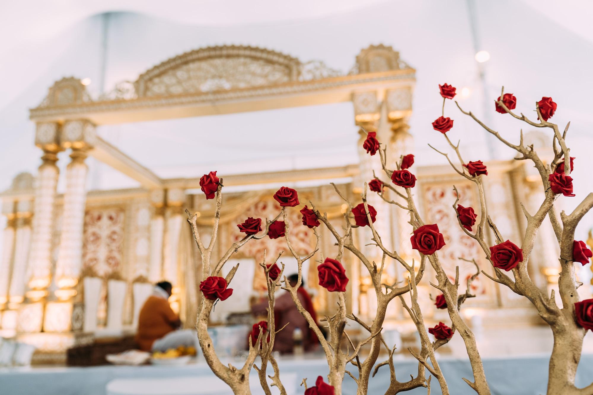 2018-CN-Wedding-Previews-40.jpg