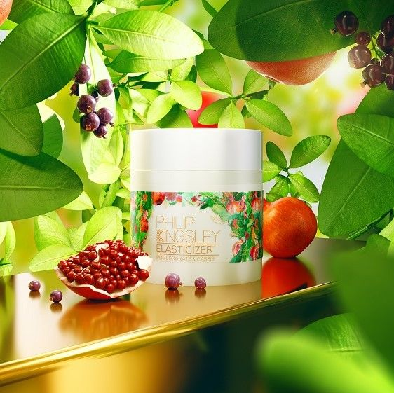 Philip Kingsley Pomegranate & Cassis Elasticizer.jpg