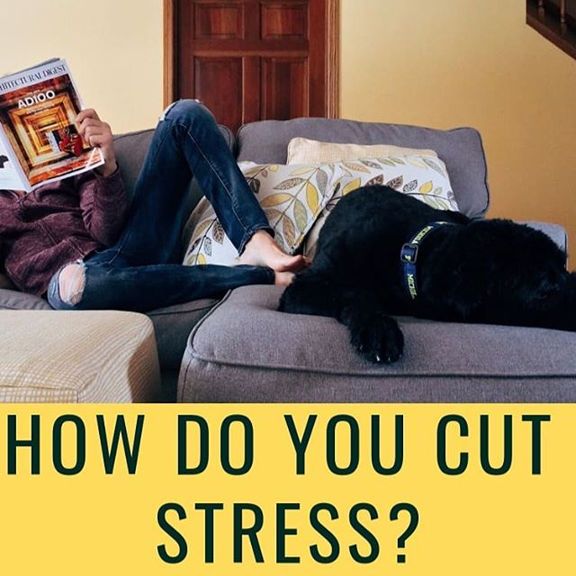 👊📺💆🏼When you're feeling stressed, how do YOU relax?  Check out my stress-busting blog. Link in bio.