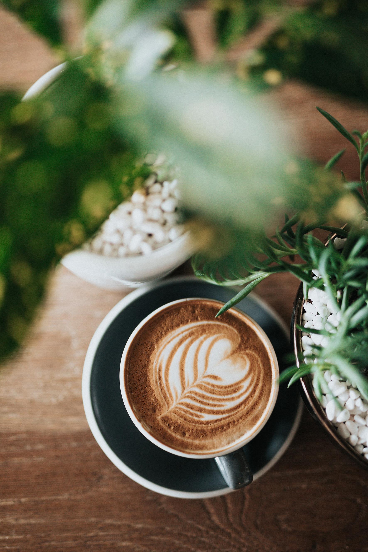free coffee at Tribe York2.jpg