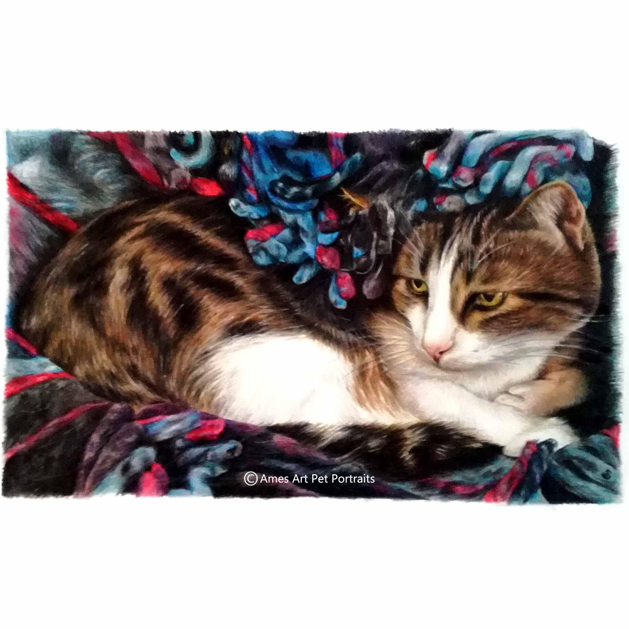 'Maka Lea' - USA, 11.7 x 16.5 inches, 2017, Color Pencil Cat Portrait