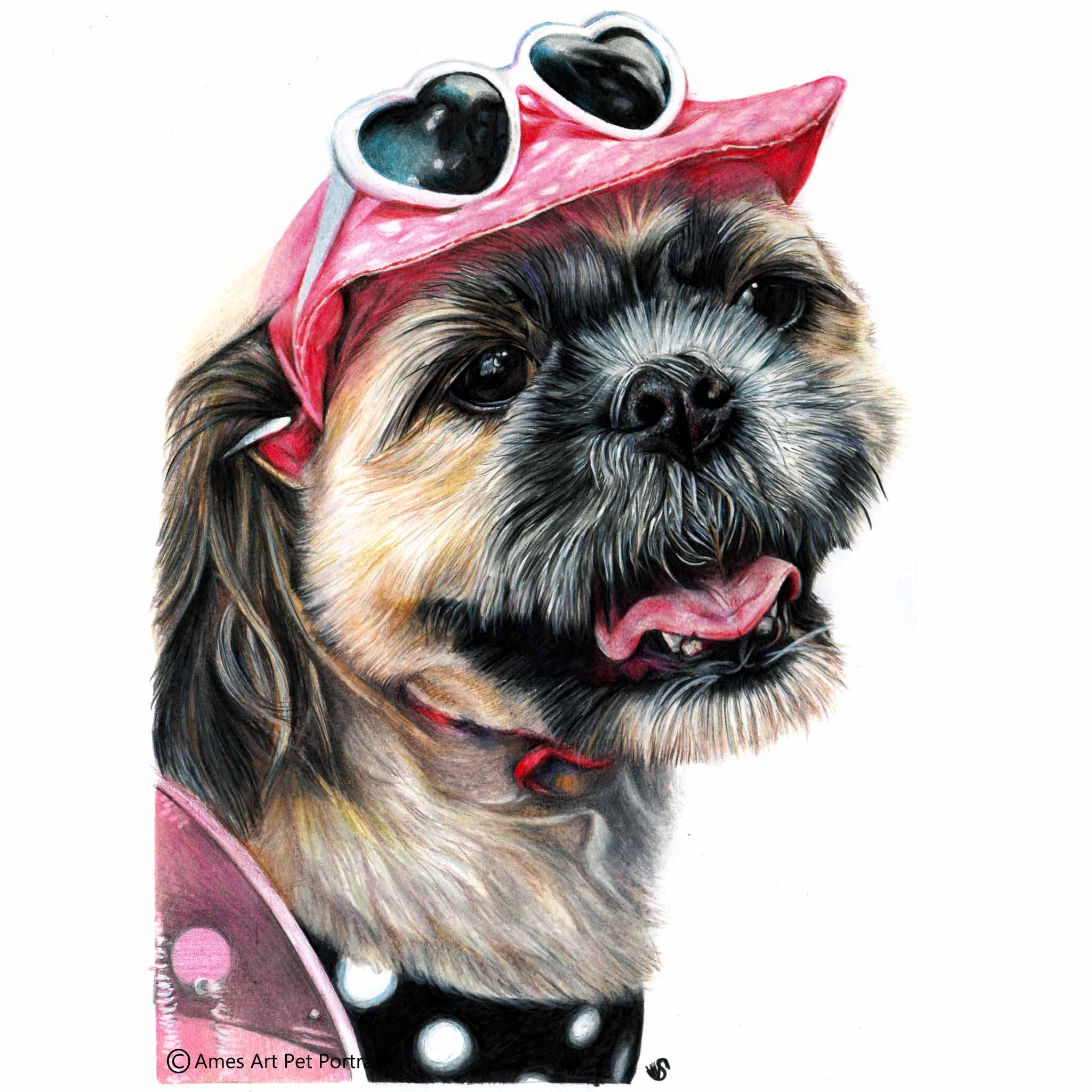 'Mia' - AUS, 11.7 x 16.5 inches, 2017, Colour Pencil Dog Portrait