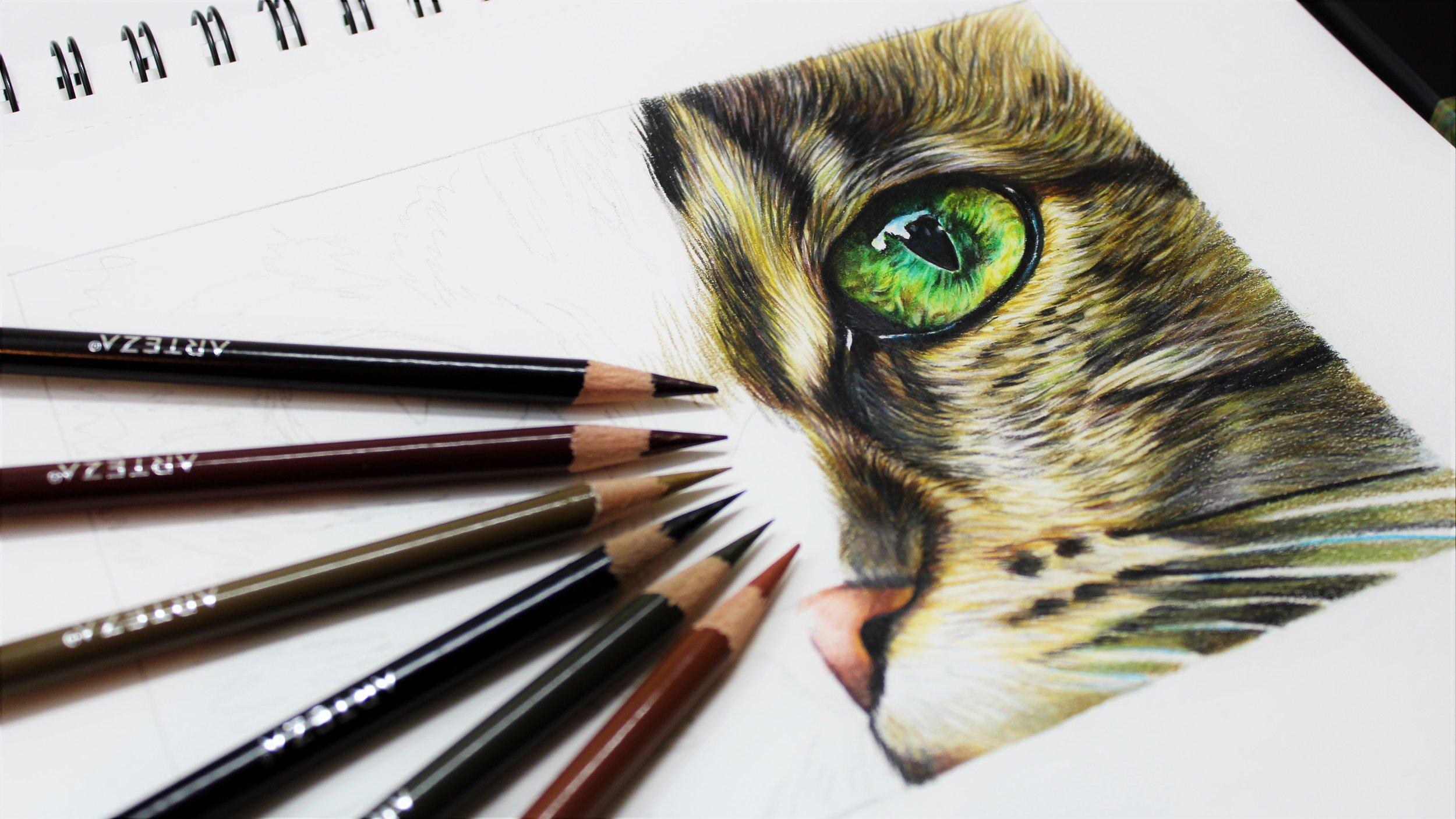 Arteza testing, sema martin pet portrait artist
