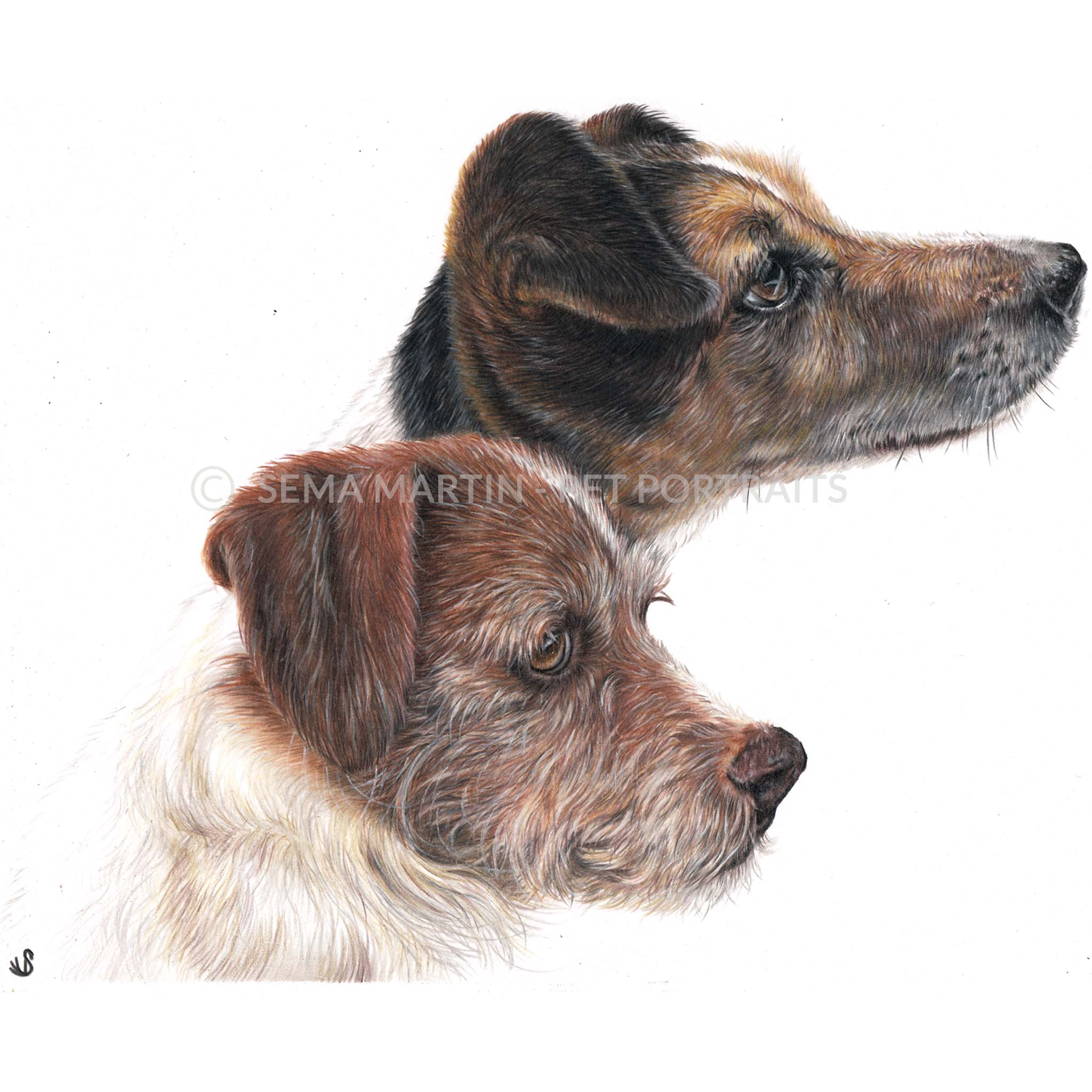'Tu Tu & Tinsel' - UK, 8.3 x 11.7 inches, 2019, Custom Colour Pencil Portait of two Jack Russell Terriers