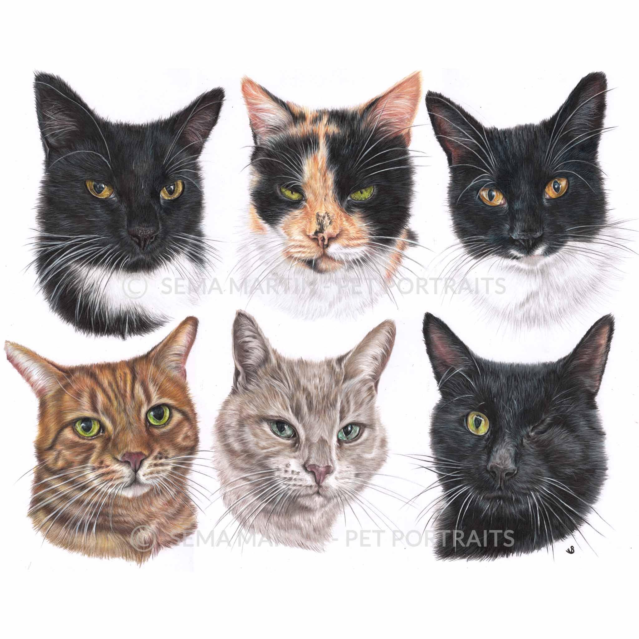 'Tia, Daisy, Smudge, Timmy, Gordon & Garfield' - UK, 23.4 x 16.5 inches, 2019