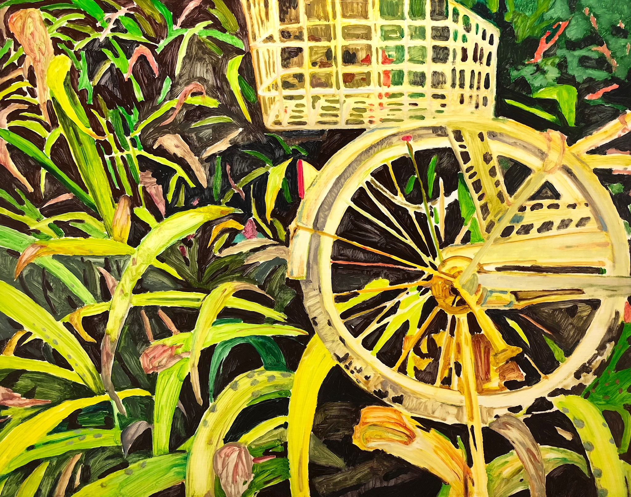 Cycle and Grasses