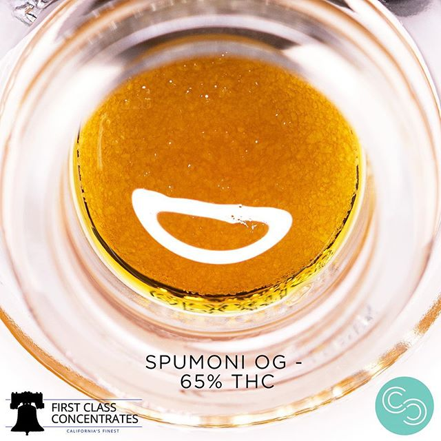 Available at @sscc_mmj — Spumoni OG cultivated by @tg_genetics__  is probably my favorite out of the line up dropped at South Sac Care Center, creamy ice cream inhale is coupled by gassy exhale. The consistency is listed as a sauce but you can clearly see the nice little crystals underneath the terp layer. —- As always thanks to everyone for your support while we get our new facility going! —- #firstclassconcentrates #sacremento #916 #sanfrancisco #santarosa #sativa #indica #calyx #pistil #trichome #wfayo #weshouldsmoke #cannabiscommunity #hustle #buildyourempire #hightimes #cannabiscup #cannabiscupwinner