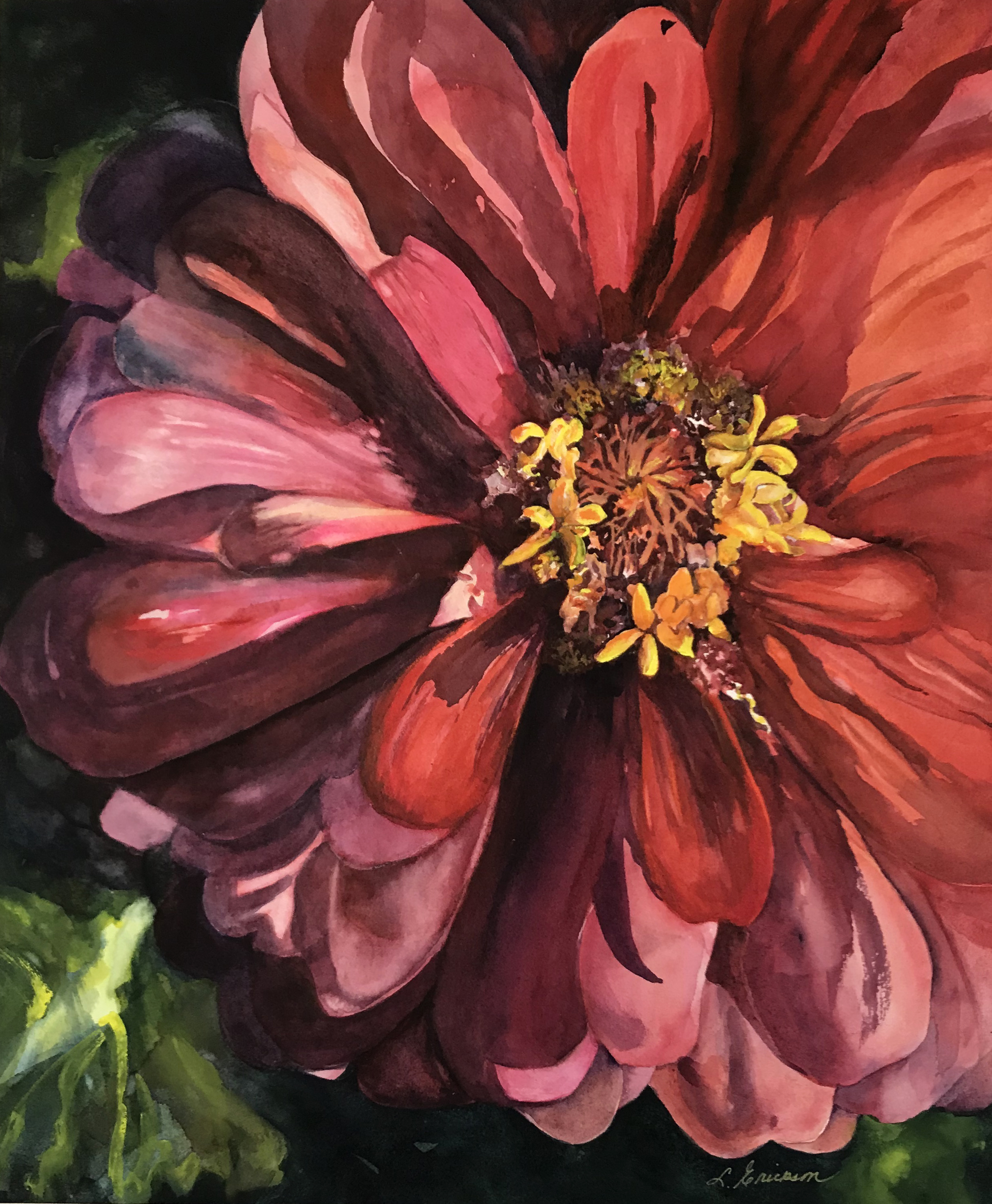 Not Your Mother's Zinnia - watercolor