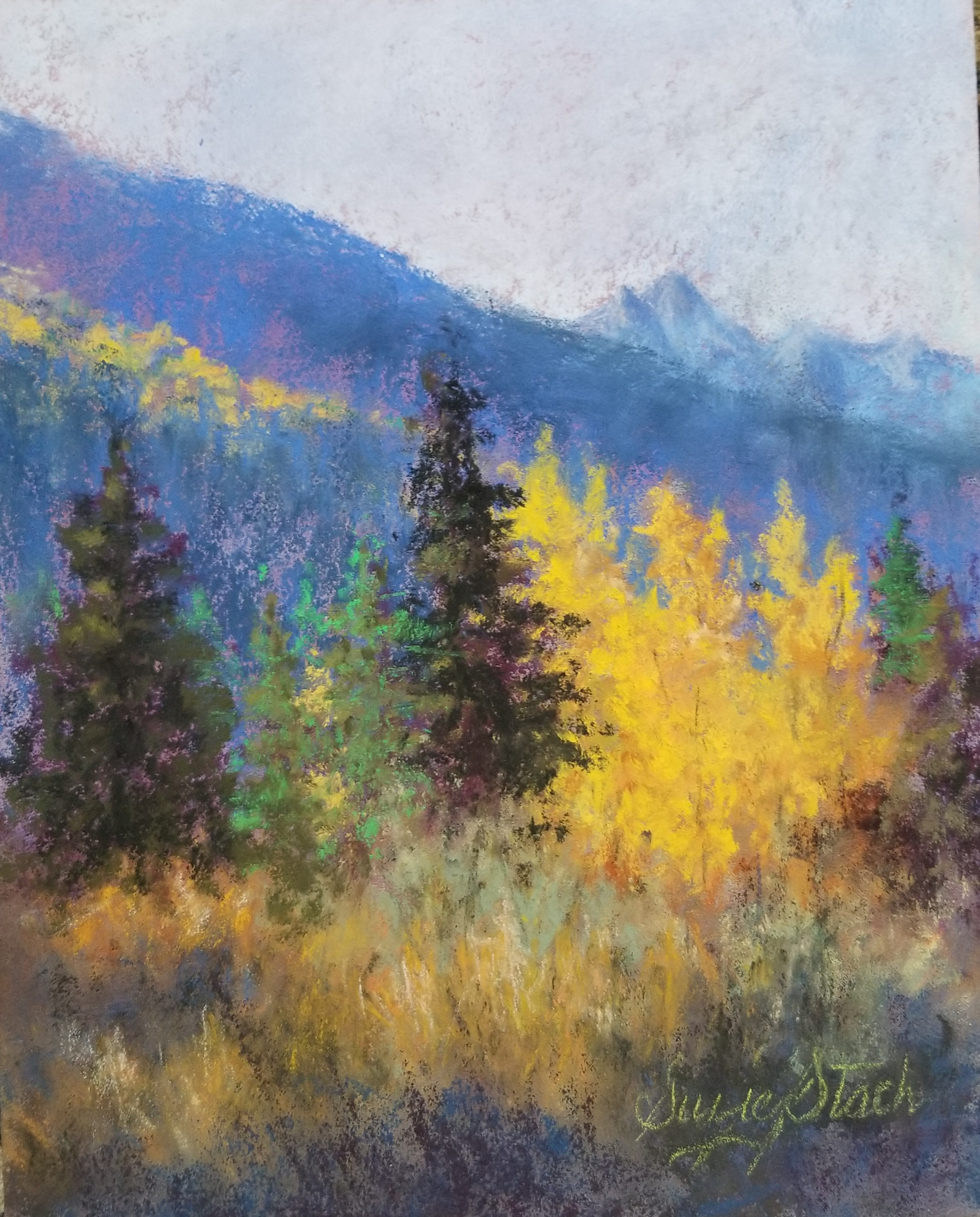 Yellow Aspens - pastel