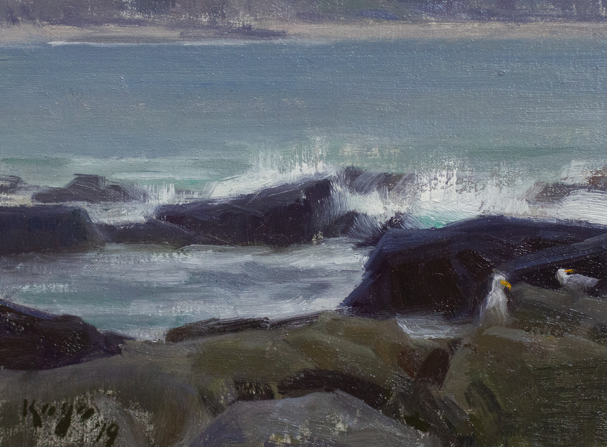 Waves & Gulls