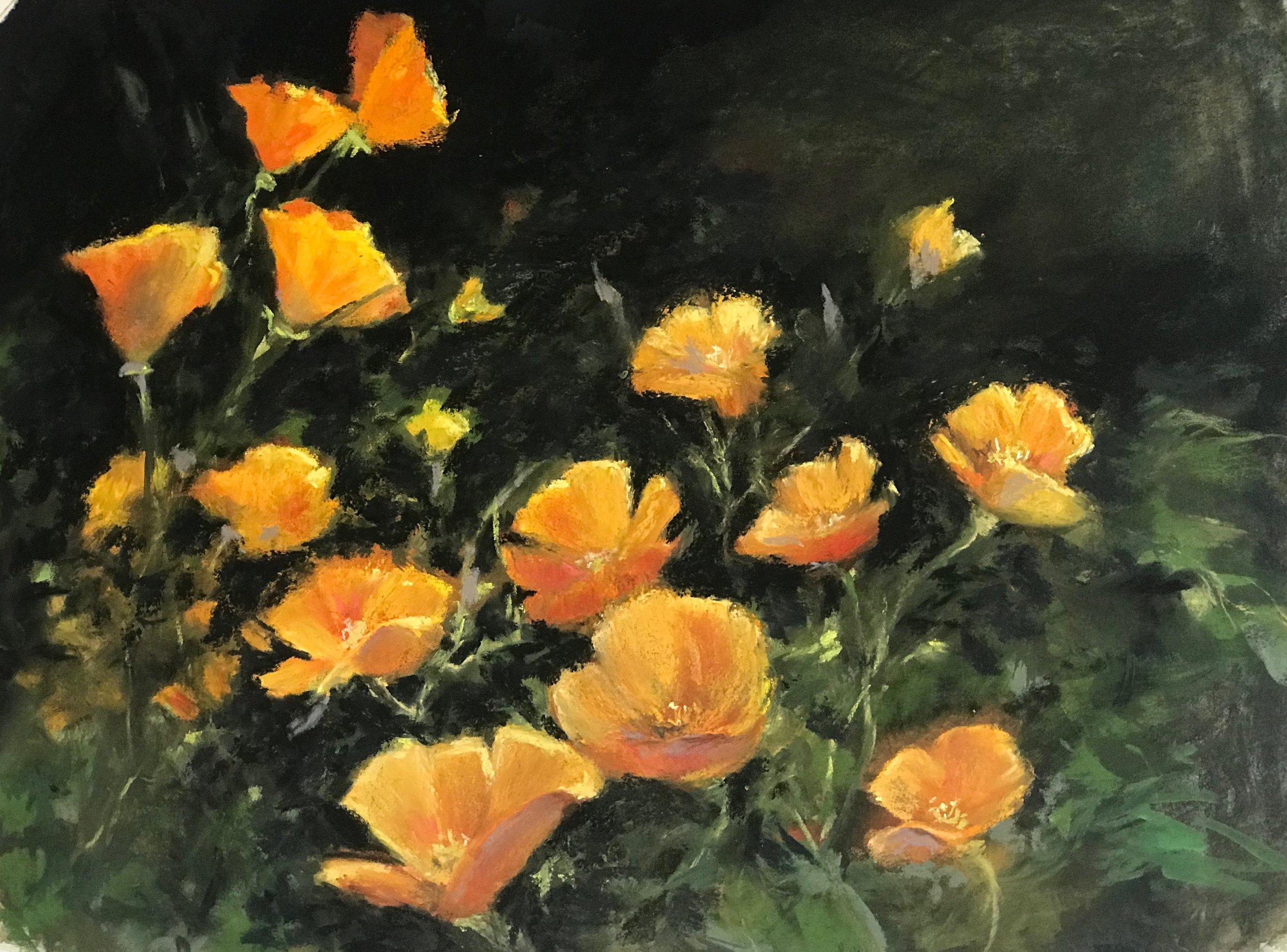 Poppies & Poppies pastel