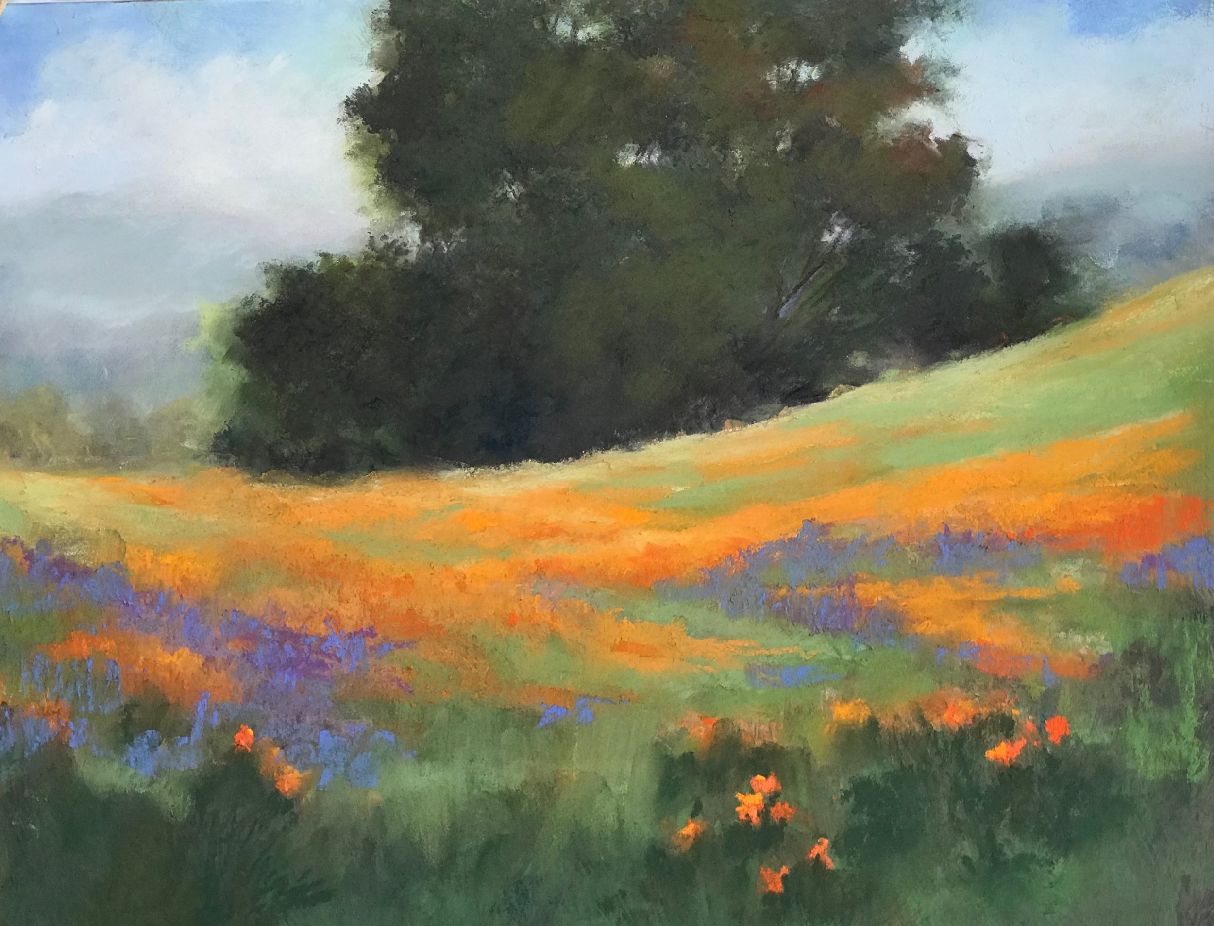 California Hill pastel