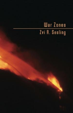 War Zones Cover Photo.JPG