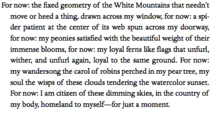 Richard Blanco_poem.png