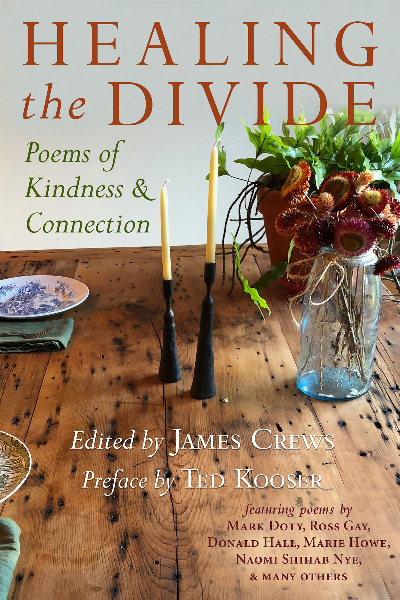 Healing the Divide , edited by James Crews   (Green Writers Press)